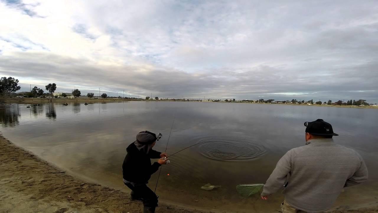 Santa ana river lakes trout fishing january 4 2016 for Santa ana river lakes fishing