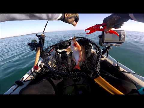 Wellington Point Kayak Fishing
