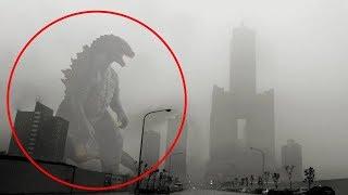 Godzilla Có Thật Không ? Những Lần Thấy Godzilla Ngoài Đời Thật
