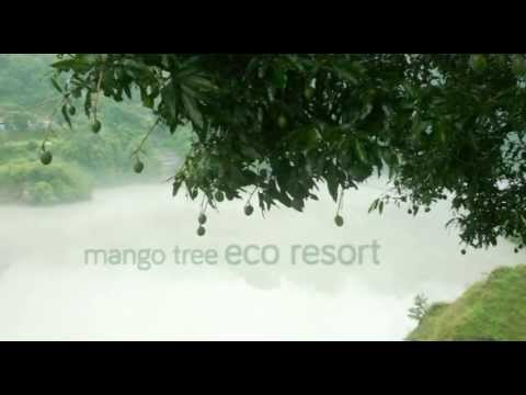 Business Square Two - Mango Tree Eco Resort