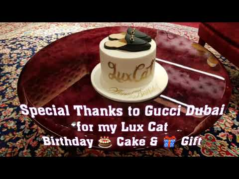 MY LUX CAT BIRTHDAY CAKE GIFT FROM GUCCI