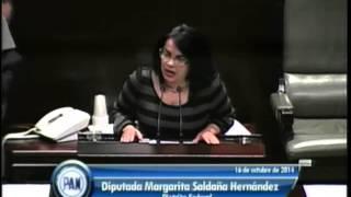 Dip. Margarita Saldaña (pan) - Ley De Ingresos 2015 (reservas)