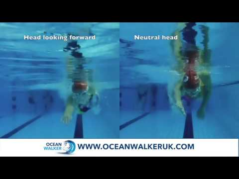 Swimming - Head Position