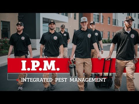 Our Integrated Pest