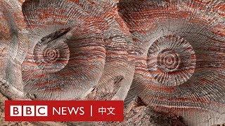 「人類紀」— 地球已進入由人類主導的新地質時代 - BBC News 中文