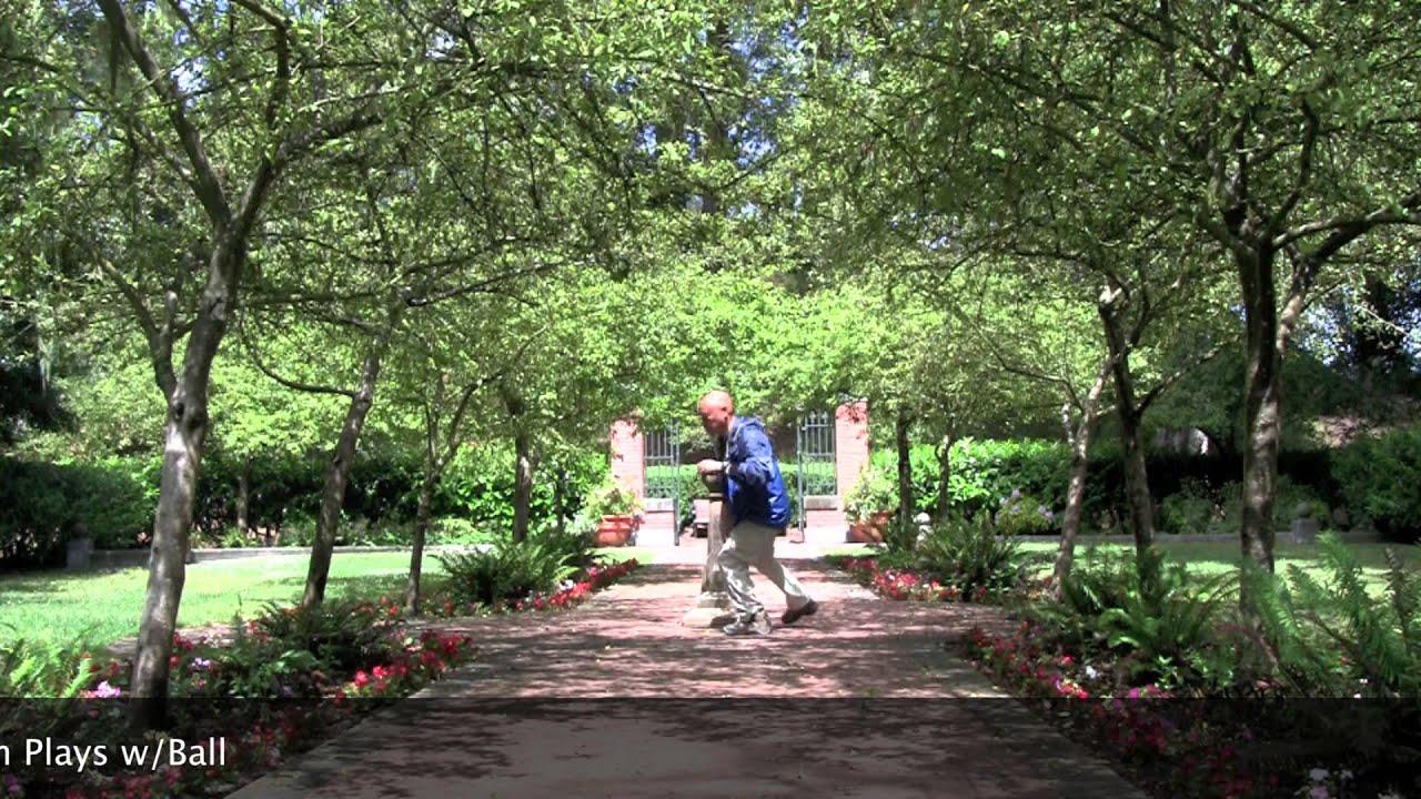 Shakespeare Garden San Francisco Ca Fasci Garden