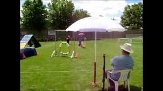 Agility - Royackers Canada Cup