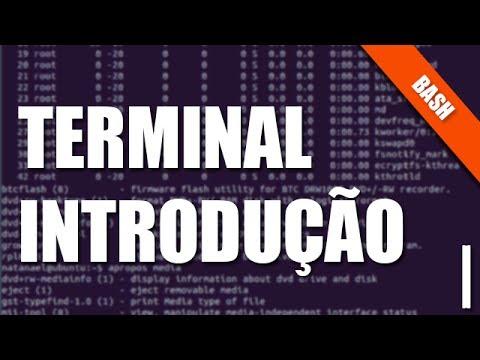 Bash e Terminal Linux - I - Familiarizando-se
