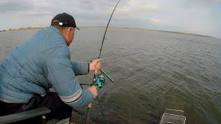 Фидерная рыбалка на запретке, карпы рвут поводки и валят треноги с удилищами!