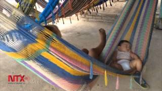 Artesanos de las Hamacas de Pénjamo, buscan apoyo para exportar