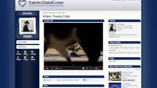 Catch4Catch.com Free Jewish dating site 100% - Funny Cats TOTALLY FUNNY!!
