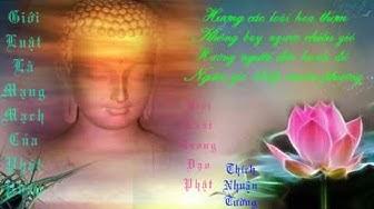 Giới Luật Trong Đạo Phật-Diễn Đọc: Thích Nhuận Tườ