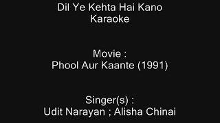 Dil Ye Kehta Hai Kano Mein Tere (I Love You) - Karaoke - Phool Aur Kaante - Udit Narayan ; Alisha