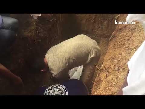 Prosesi Pemakaman Dianti Dyah Ayu Cahyani Putri