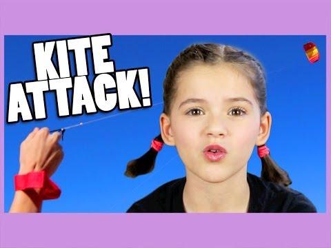 KITE ATTACK!  |  KITTIESMAMA