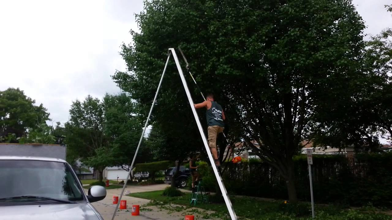 How to trim a bradford pear tree youtube solutioingenieria Image collections