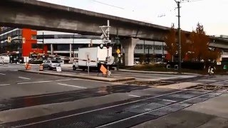 Vancouver Trolley bus Watching November 2015