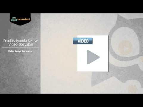 12. Video Dosya Formatları