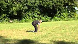 Pearl (jack Russell Terrier) Boot Camp Dog Training Video