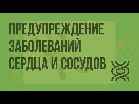 Сердечно-сосудистые заболевания – сайт диетолога Людмилы