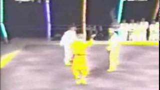少林功夫vs韩国跆拳道