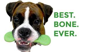 Best Dog Bone Ever! Video