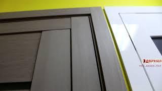 видео Дверь Profildoors «XN (модерн)» - 2.02 (стоун, стекло черное глянцевое)