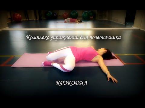 Комплекс упражнений при остеохондрозе позвоночника и
