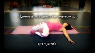Комплекс упражнений для позвоночника «Крокодил»