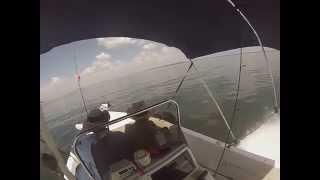 Boat Cruising at Alafia River, Gibsonton Florida