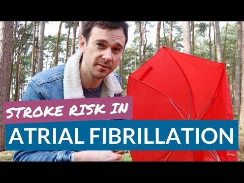 How ATRIAL FIBRILLATION increases RISK of STROKE