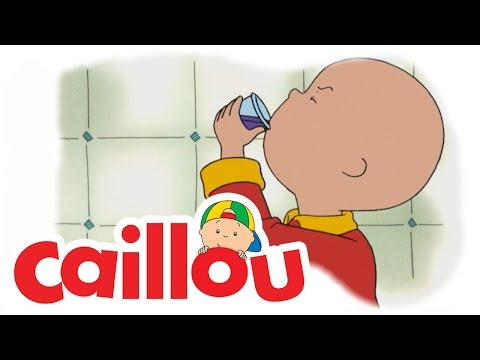 Caillou - Say Cheese  (S02E10) | Cartoon for Kids