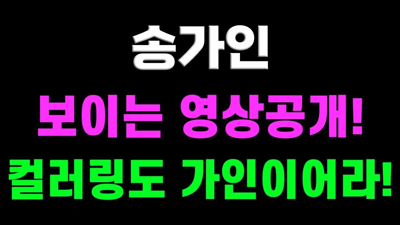송가인 보이는 영상공개! 컬러링도 가인이어라! 트로트닷컴