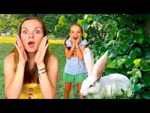 София играет в прятки с  волшебным кроликом!