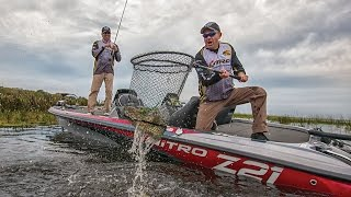 NITRO Boats: 2017 Z Series Performance Bass Boats