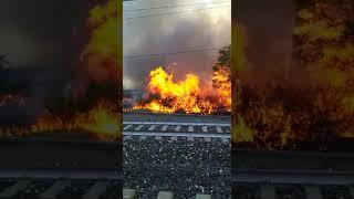 Incendio lungo la linea ferroviaria tra Molise e Abruzzo