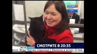 """История кота путешественника в прямом эфире """"Вести-Иркутск"""""""