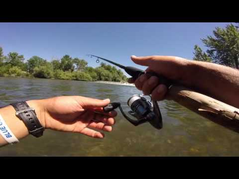 Trout Fishing The Boise River