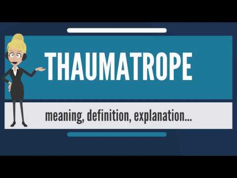 What is THAUMATROPE? What does THAUMATROPE mean? THAUMATROPE meaning, definition & explanation