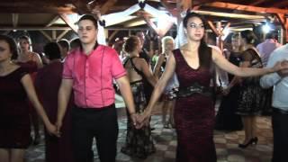 Viorel Leric - Nunta Florin si Daniela Hartagani Live 2015 5