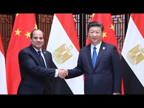 Chinese President Xi meets Guinean, Egyptian counterparts