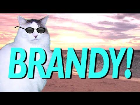 HAPPY BIRTHDAY BRANDY! - EPIC CAT Happy Birthday Song