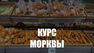 Торговые сети Калининграда не спешат снижать цены на морковь