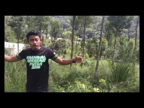 GROUP 1 (FHP 3105 FORESTRY SILVICULTURE) -Video 2 Aquilaria malaccensis Growth