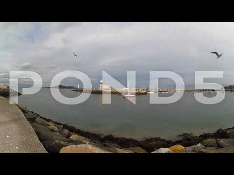 360 view pier seagulls chasing