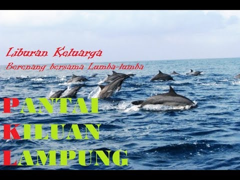 pantai-kiluan-lampung---berenang-bersama-lumba-lumba-dan-ikan-paus