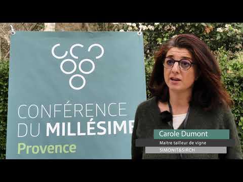 2019 Provence Conference du Millesime - Résumé