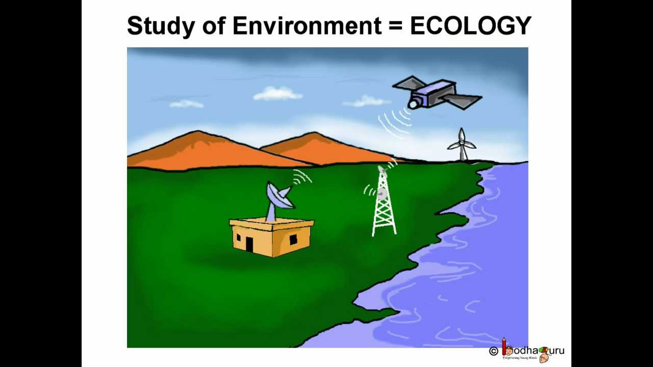 Science  Environment  Pollution  Telugu  Youtube