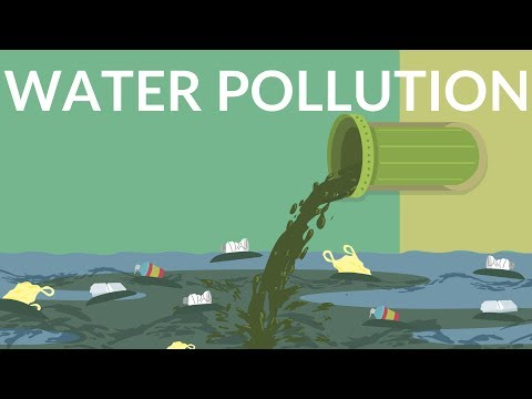Water pollution || What are the causes of water pollution || Video for kids