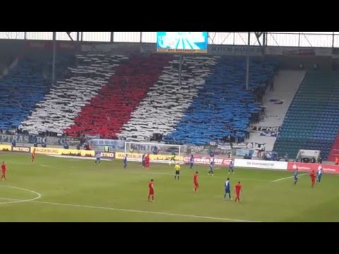 Hansa Rostock Magdeburg